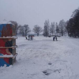 Inspis Talvipuisto